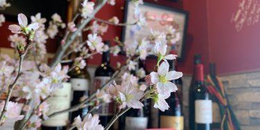【世界のワイン】春爛漫!そんな時に飲みたくなる スロバキア/スペインのワイン